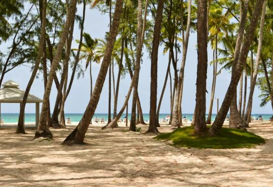 t1-vista-sol-punta-cana-beach-resort-225792.jpg