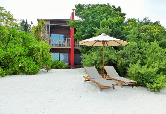 t1-the-barefoot-eco-hotel-256596.jpg