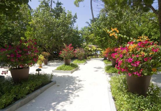 t1-embudu-village-resort-256606.jpg