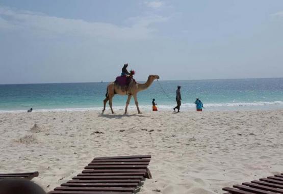 t1-southern-palms-beach-resort-268101.jpg